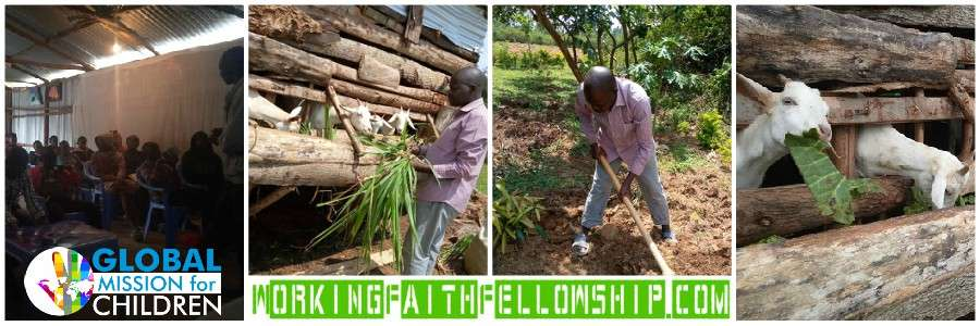 Siaya Kenya Rift Valley Goats Jesus Banner Fellowship Kenya