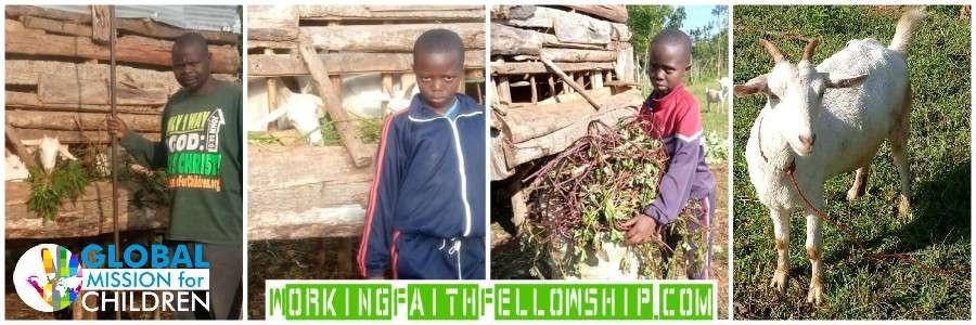 Siaya Goats Banner Jesus World Vision Agricultural Sponsor a Child Kenya
